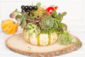 center pieces for thanksgiving, yoga flowers, yoga gifts